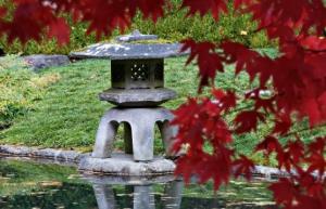 OMCOS 2021 - Chinese Gardens