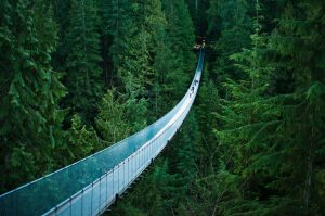 OMCOS 2021 - Sun Yat-Sen Classical Chinese Garden Vancouver